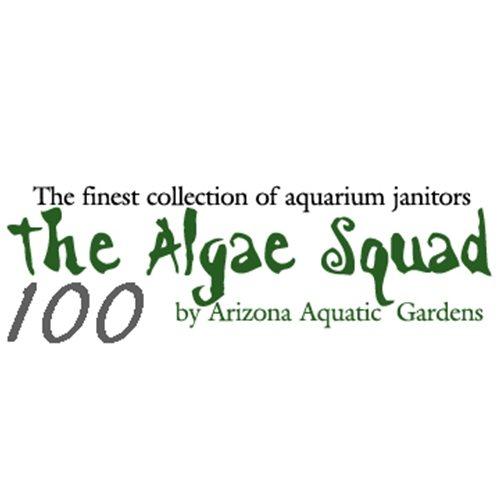 The Algae Squad100