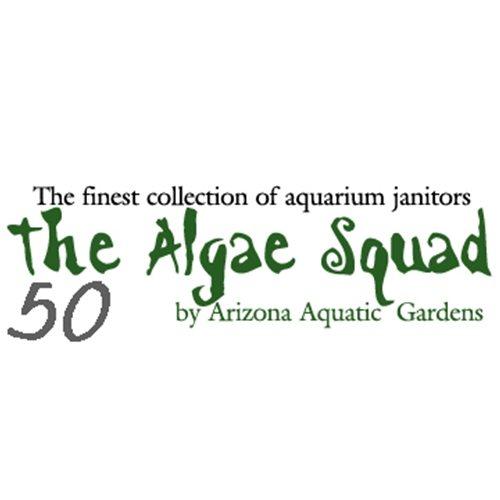 The Algae Squad50