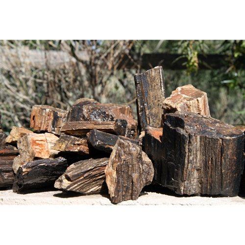 AAG Petrified Wood