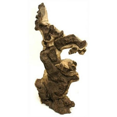 African Mopani Jumbo Driftwood