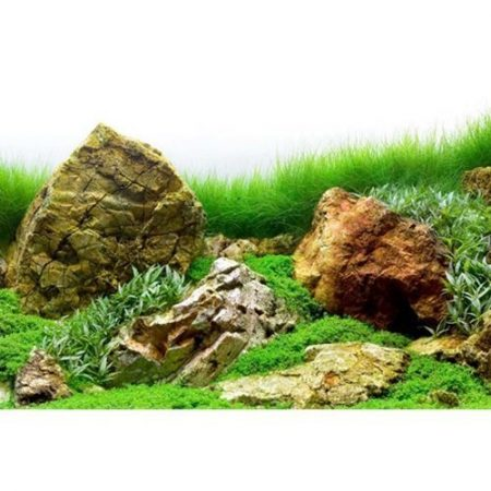 River Rock Double-Sided SeaView Tank Background