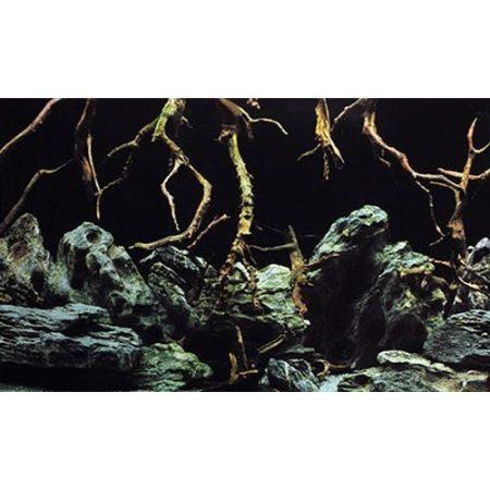 SeaView Natural Mystic Aquarium Background