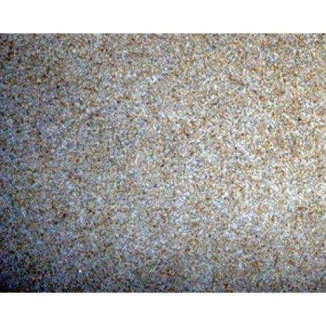 Stoney River Natural Aquatic Beige Sand