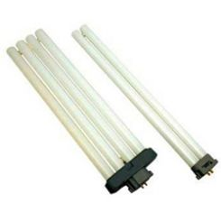 Power Compact Fluorescent Bulbs
