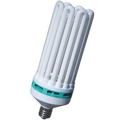 Feliz Power Compact Fluorescent Bulbs