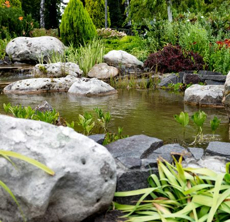 Pond Plant Habitat Packages